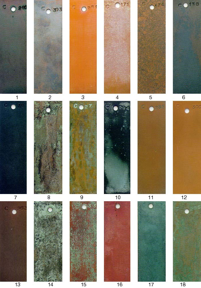 Specialty Interior Paint Finishes