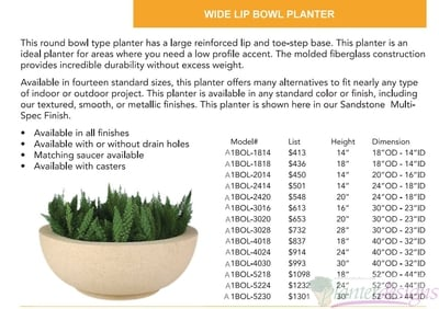 Wide Lip Bowl planter